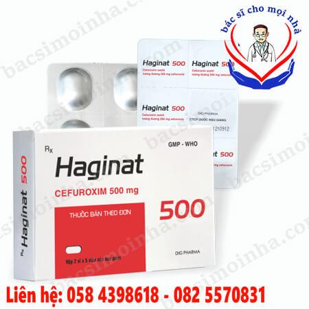 haginat_500